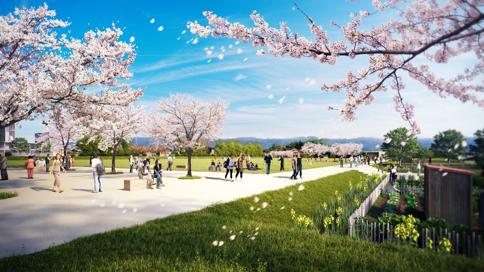 espaces naturels et agricoles, la topographie et le paysage Geneve